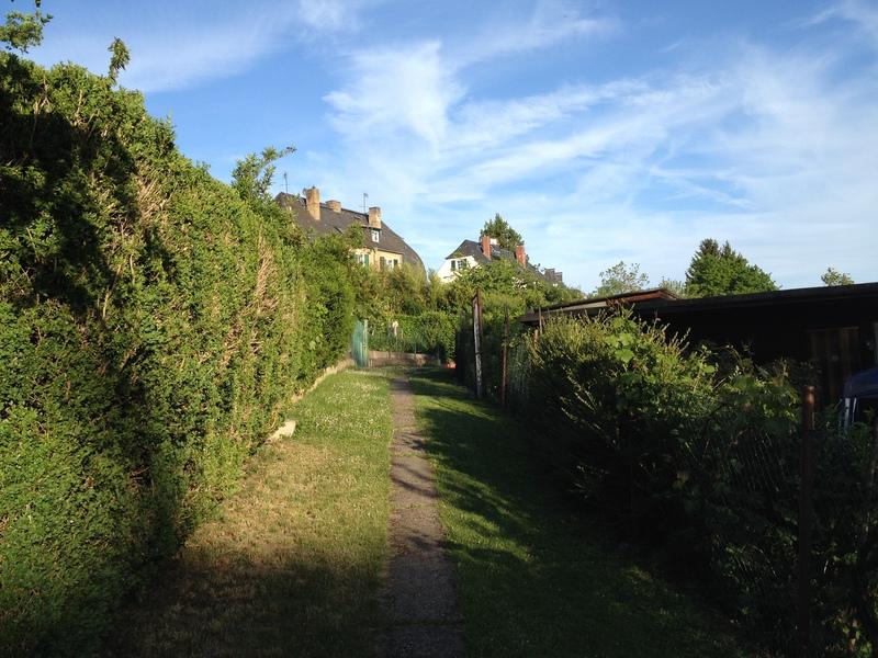 Kleingartenverein Wiesbaden Und Umgebung Ev Am Kirschenpfad